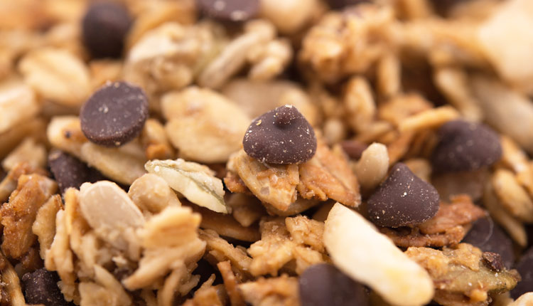 GERBS CHOCOLATE CHIP ALLERGY FRIENDLY GRANOLA