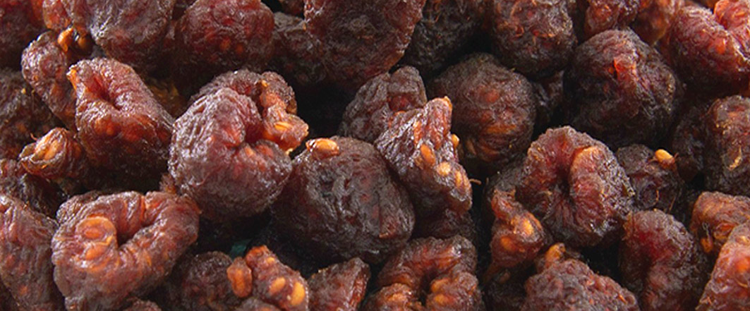 NEW DRIED FRUITS - ALLERGY FRIENDLY RASPBERRIES FROM GERBS