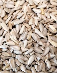 Sunflower Kernels (shelled)