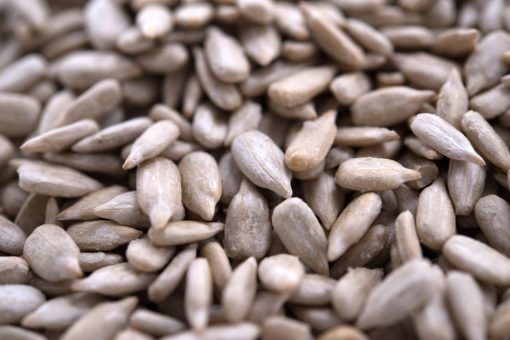 Unsalted Sunflower Seed Kernels  - Dry Roasted Close up