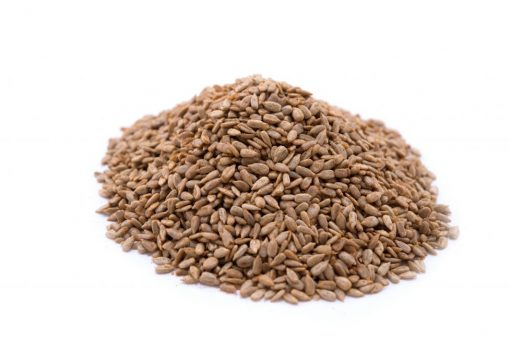 Chipotle Seasoned Dry Roasted Sunflower Seed Kernels - Dry Roasted