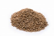 Habanero Seasoned Dry Roasted Sunflower Seed Kernels - Dry Roasted