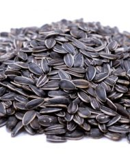 Lightly Sea Salted Dry Roasted In Shell (whole) Sunflower Seeds