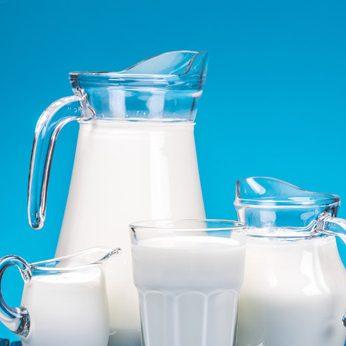 Gerbs Allergy Hub - Dairy Allergens