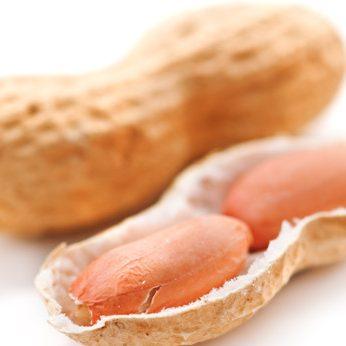 peanut-legume-allergies