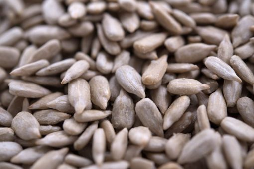 Sea Salted Sunflower Seed Kernels - Dry Roasted Close up