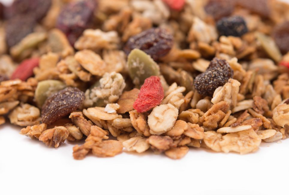 dried cherry blueberry fruit mix 1 lb bag food allergy safe