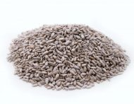 Unsalted Dry Roasted Sunflower Seed Kernels
