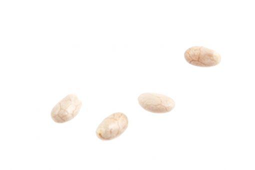 Raw White Chia Seeds Multiple