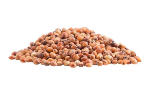 Red Sorghum Grain