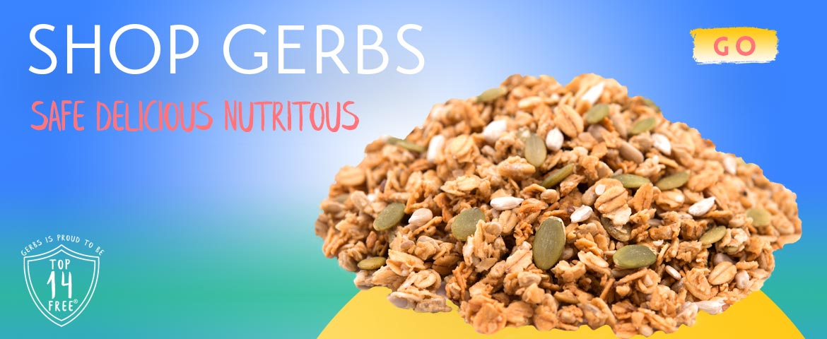 Nutritious Granola by Gerbs Allergy Friendly Foods